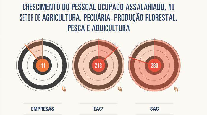 Ferramenta_estatisticas_grafico2