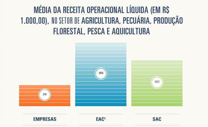 Ferramenta_estatisticas_grafico4