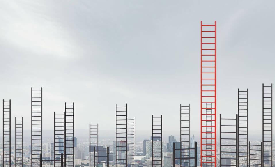 Economia de escala: menos recursos e mais produtividade
