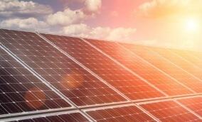 Quando a sustentabilidade é um bom negócio: dicas para economizar recursos naturais e financeiros