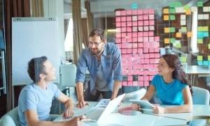 Estratégia orgânica em uma empresa é possível?