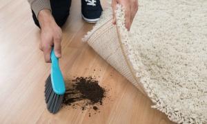 Sonegação: a sujeira embaixo do tapete
