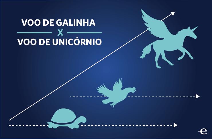 Infografico- Voo Unicornio-01-01