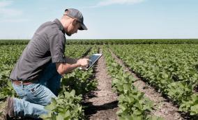 Agricultura digital: solução para alimentar um mundo que não para de crescer?