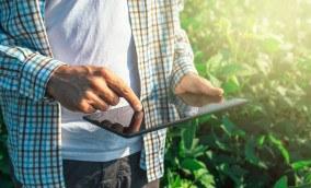 O Scale-Up Endeavor Agrotech já selecionou as empresas participantes. Conheça quem está mudando a cara do agronegócio
