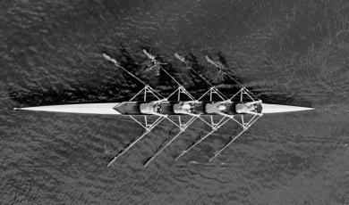 Open Innovation: como o engajamento com scale-ups pode acelerar sua estratégia de inovação corporativa