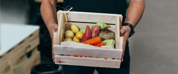 Scale-Up Endeavor Alimentos e Bebidas: conheça as 15 empresas selecionadas